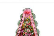 [알림] 결혼합니다 한광식 · 방재석 의 아들 한성호