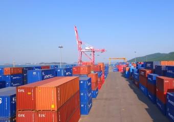 서산 대산항, 상반기 컨테이너 물동량 전년 대비 55% 상승!